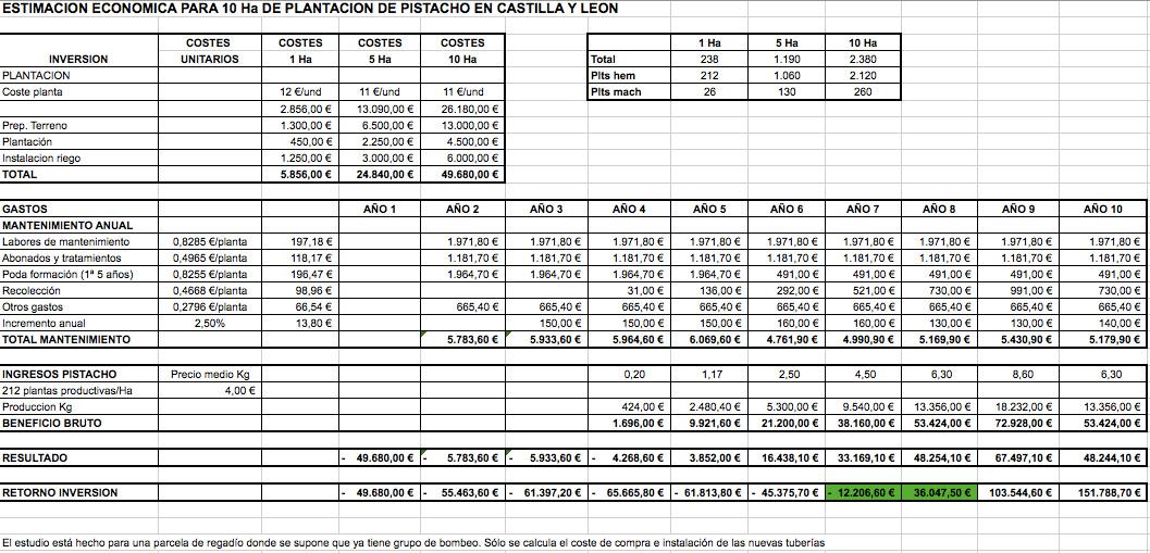 Estudio económico para el cultivo de pistacho para 10 hectáreas