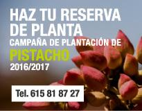 reserva planta pistacho 2016-2017